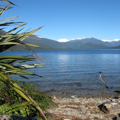 Lake Kaniere Medium