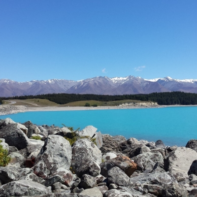 Pukaki Medium 7 Days Southern Lakes & Glaciers