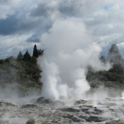 geysers rotorua 10 Days North Island Wines & Sights
